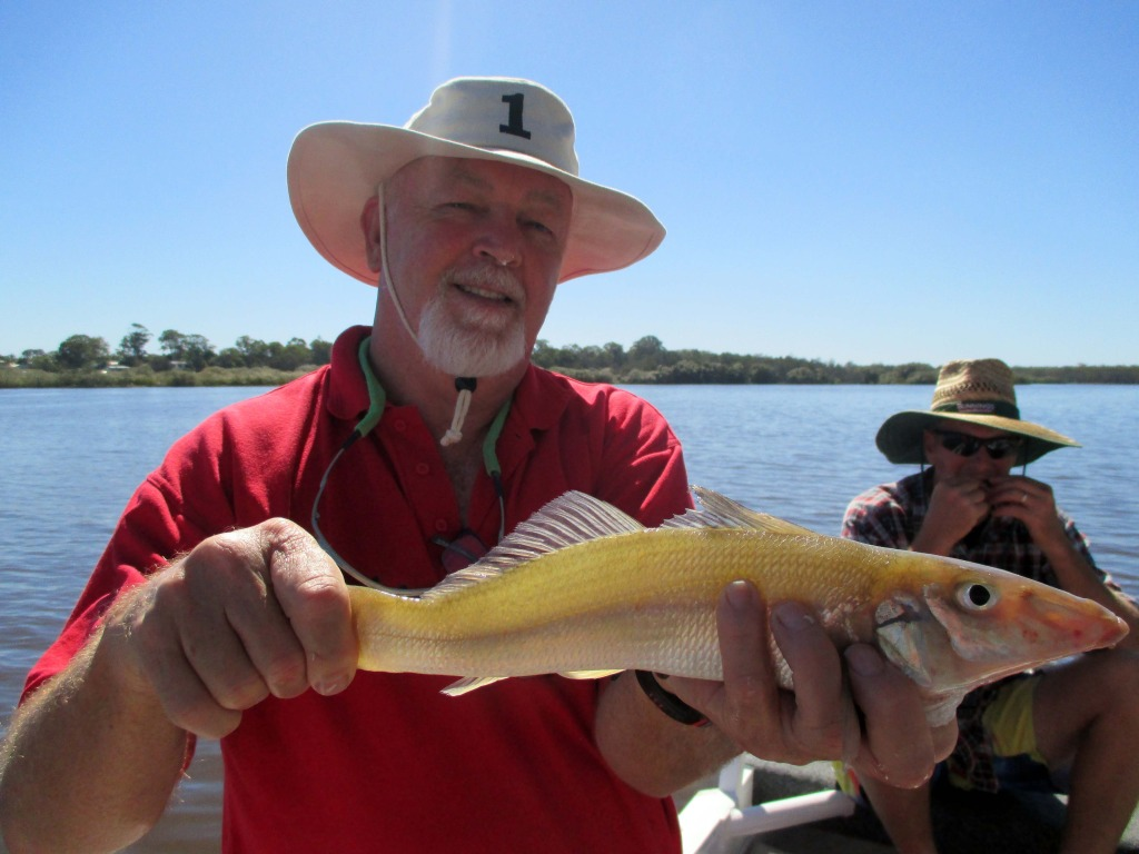 Stewart from Sunshine Beach caught a great 40cm whiting.
