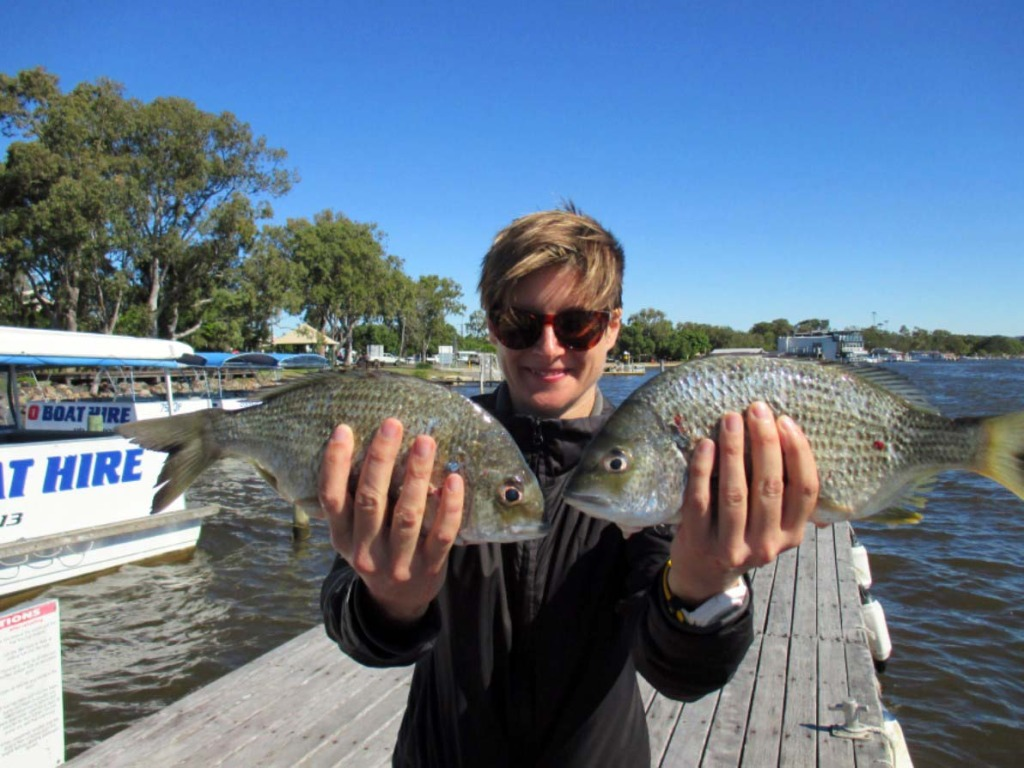 Tanya was holidaying in Noosa from Sydney and pulled in two nice 34cm bream at Lake Cooriobah whilst aboard the Noosa Fishing and Crab adventures.