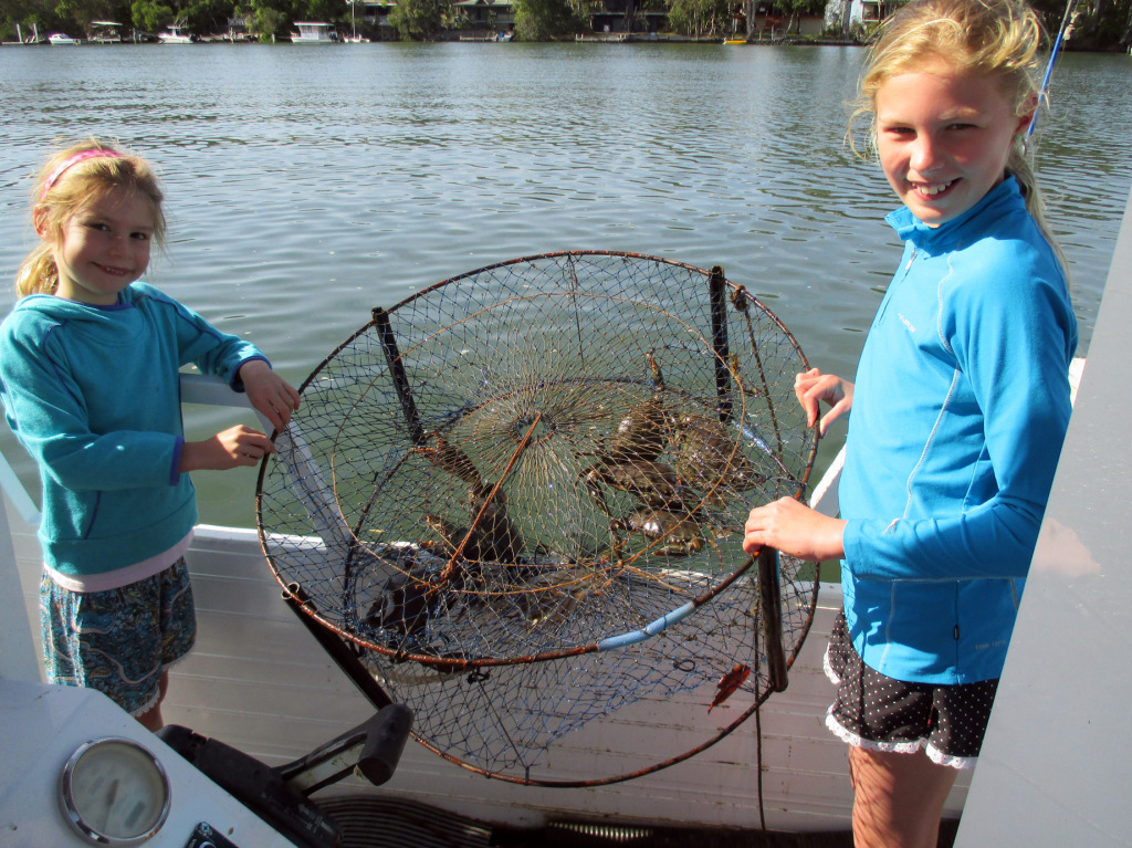 Jess and Abby caught and released multiple mud crabs along the stretch from the Yacht Club up to the ski run near the Tewantin Marina.