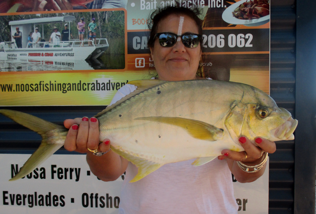 Golden Trevally caught aboard #Noosa #Fishing #Crab #Adventures.